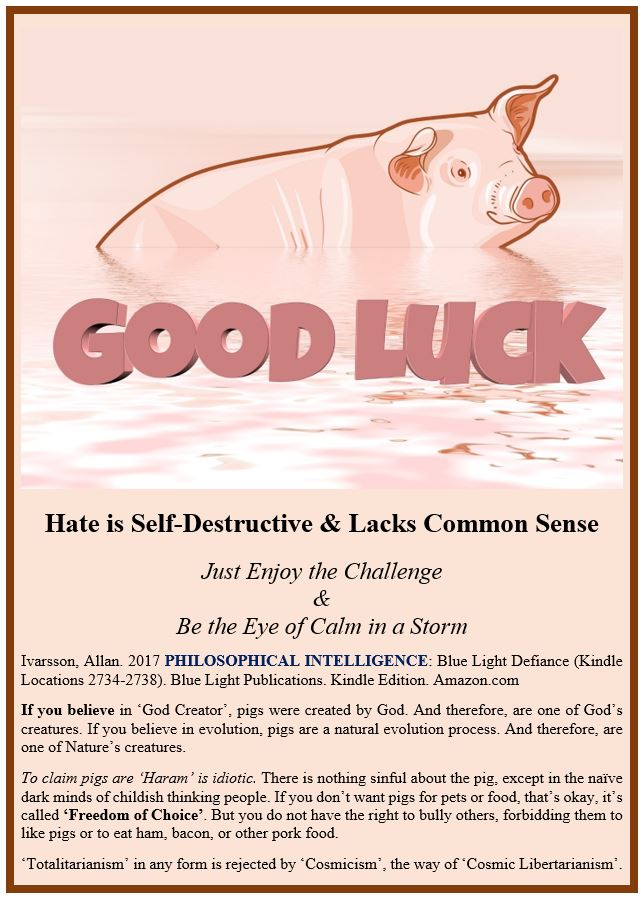 HATE POSTER 2017 IMAGE 001