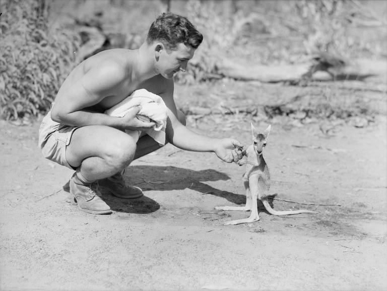 australia-81317_1920