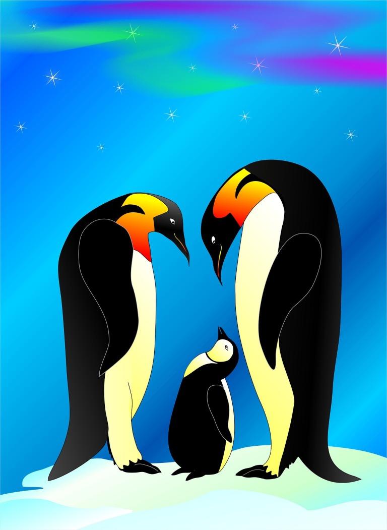 penguin-1897051_1920