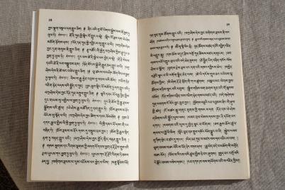 book-1442559_1920