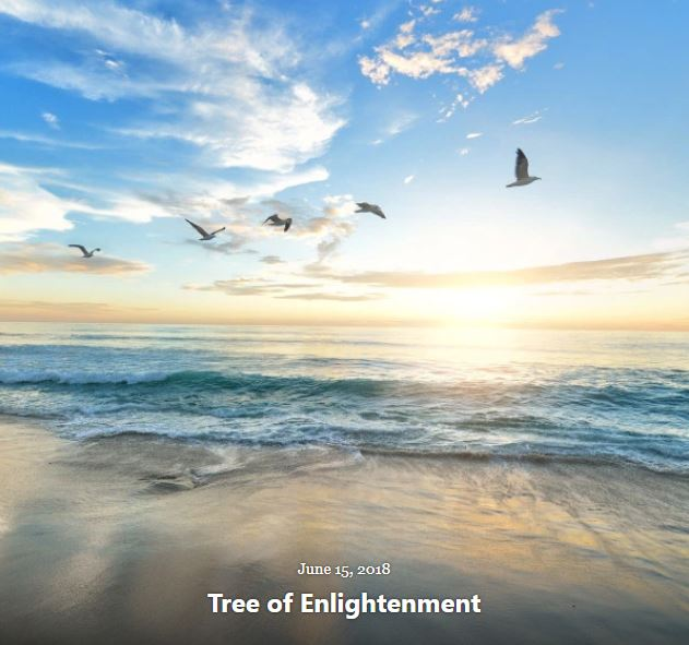 BLOG TREE ENLIGHTENMENT JUN 15 2018
