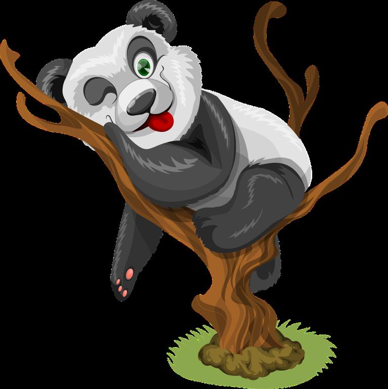 panda-1454629_1280