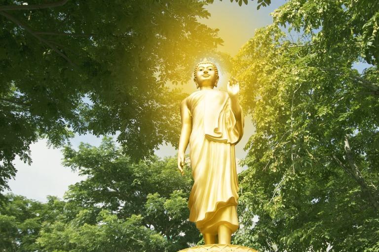 buddha-2424129_1920
