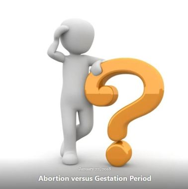 BLOG ABORTION GESTATION PERIOD JAN 22 2018