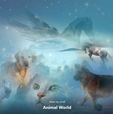 BLOG ANIMAL WORLD JUNE 29 2018