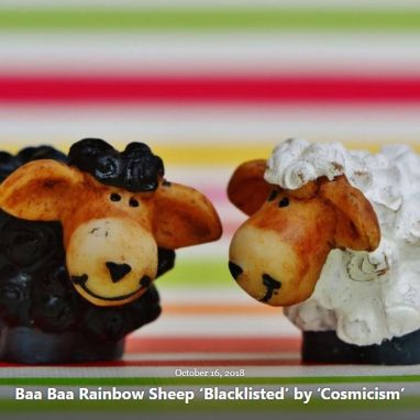 BLOG BAA BAA RAINBOW SHEEP OCT 16 2018