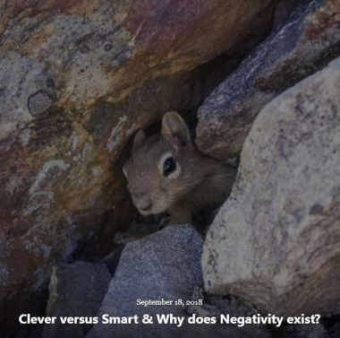 BLOG CLEVER VERSUS SMART SEP 18 2018