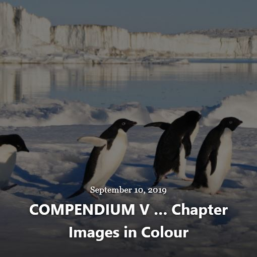 BLOG COMPENDIUM V IMAGES SEP 10 2019