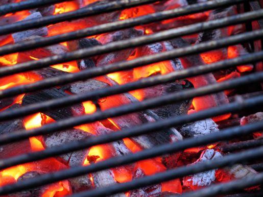barbecue-783550_1920