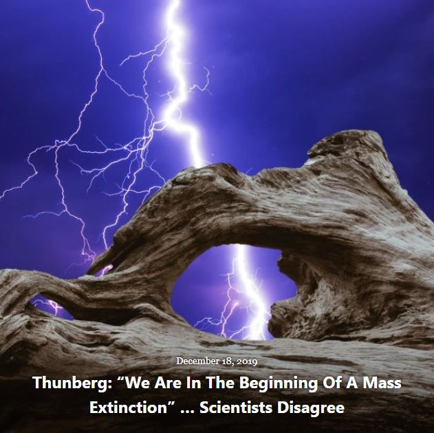 BLOG THUNBERG WE ARE BEGINNING MASS EXTINCTION DEC 18 2019
