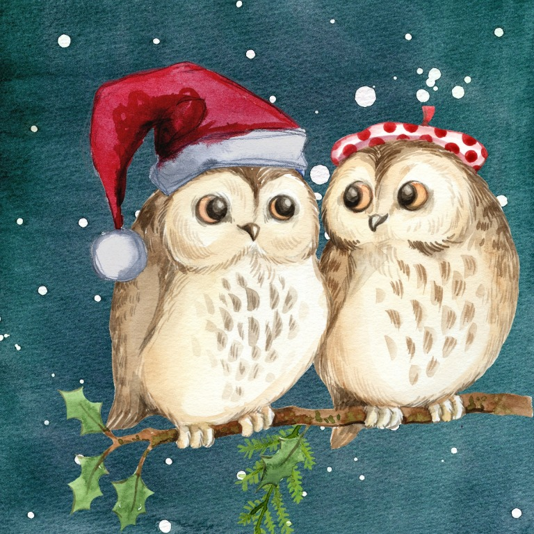 merry-christmas-2984138_1920