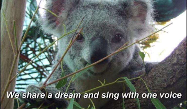 I AM AUSTRALIAN 004