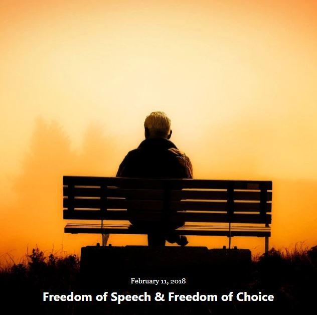 BLOG FREEDOM OF SPEECH FEB 11 2018