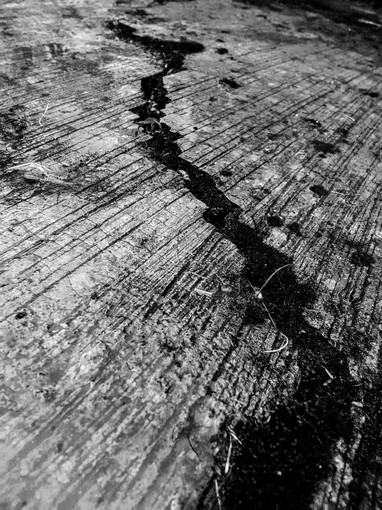 cracks-2845175_1920