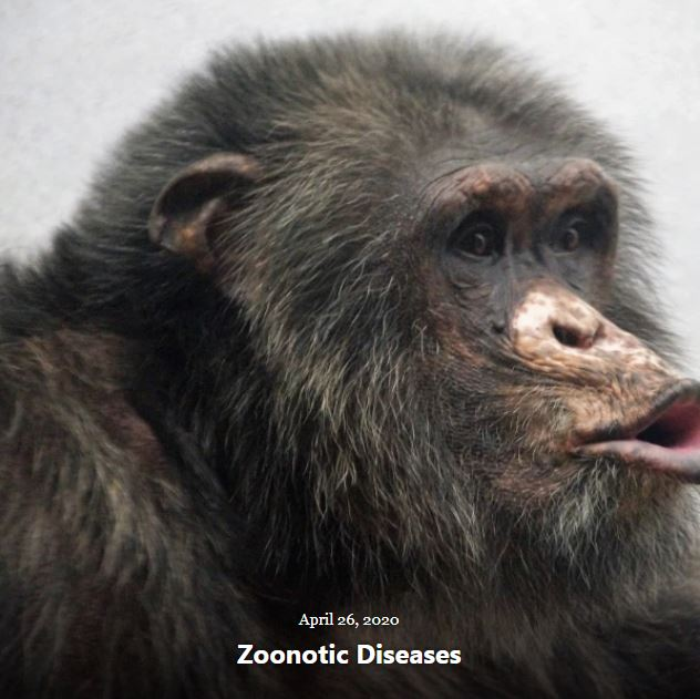 BLOG ZOONOTIC DISEASES APRIL 26 2020