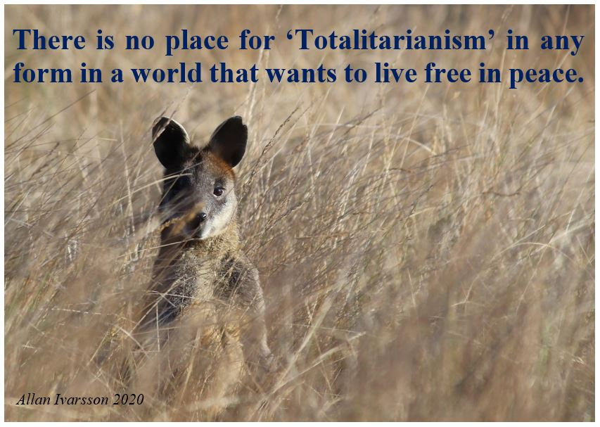 TOTALITARIANISM POSTER IMAGE 2020 001