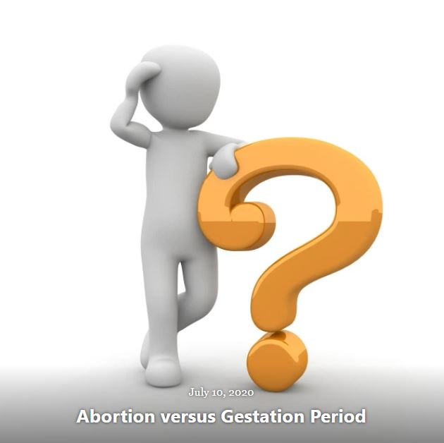 BLOG ABORTION GESTATION PERIOD JULY 10 2020